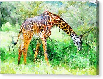 Giraffe Eating Grass Painting Canvas Print by George Fedin and Magomed Magomedagaev