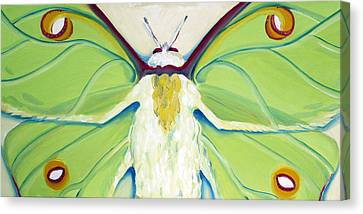 Girl Moth Canvas Print by Laura Dozor