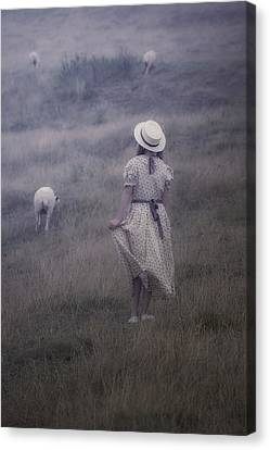 Girl With Sheeps Canvas Print by Joana Kruse