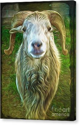 Canvas Print featuring the painting Git Yer Goat by Gregory Dyer