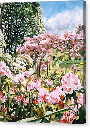 Giverny Rhododendrons Canvas Print