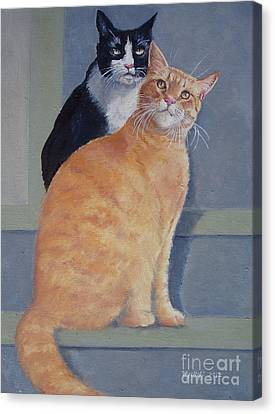 Gizmo And Haole Canvas Print by Karol Wyckoff