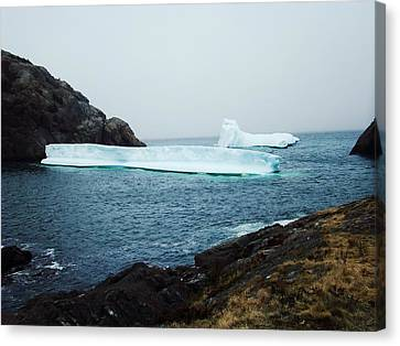 Glacial Beauty Canvas Print by Zinvolle Art