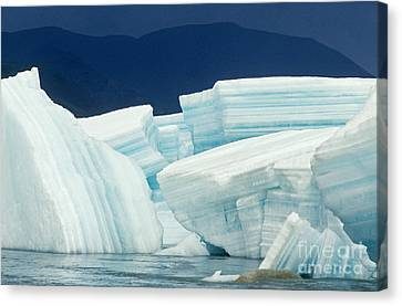 Glacial Ice Canvas Print by Art Wolfe