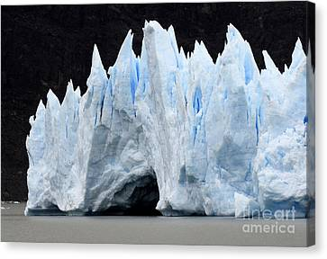 Glaciar Grey Patagonia Chile 3 Canvas Print by Bob Christopher