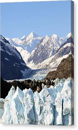 Canvas Print featuring the photograph Glacier Bay Alaska by Sonya Lang