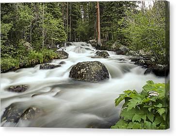 Glacier Creek Canvas Print