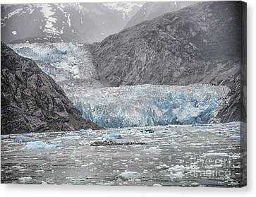 Glacier Tracy Arm Fjord Canvas Print
