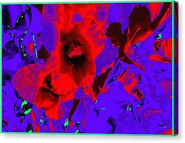 Gladiola Abstract Canvas Print