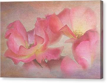 Glamour Roses Canvas Print by Angie Vogel