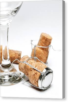 Stopper Canvas Print - Glass And Corks by Sinisa Botas
