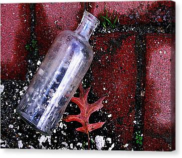 Glass Bottle And  Bricks Canvas Print by Colleen Kammerer