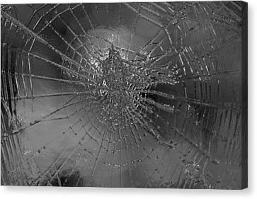 Glass Spider Canvas Print by Carol Lynch