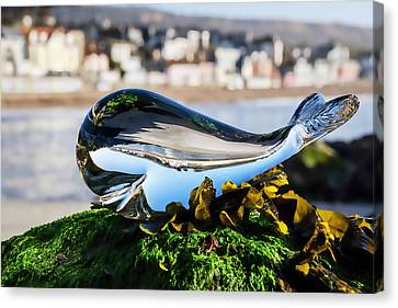 Glass Whale At Lyme Regis Canvas Print by Susie Peek