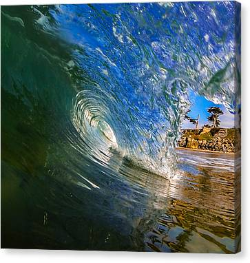 Glassy Perfection Canvas Print by David Alexander