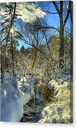 Gleaming Sun On Snowy Streambed Canvas Print by K D Graves