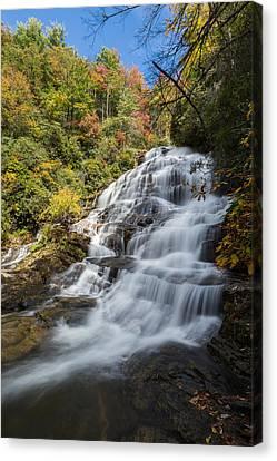 Glen Falls North Carolina Vertical Canvas Print by Andres Leon