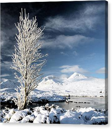 Snow Scene Canvas Print - Glencoe Winter Landscape by Grant Glendinning