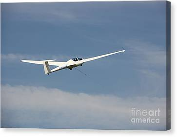 Glider In The Sky Canvas Print