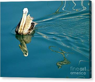 Canvas Print featuring the photograph Gliding by Clare Bevan