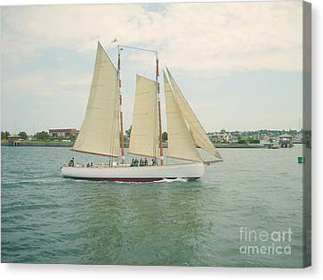 Gliding In Full Sail Canvas Print
