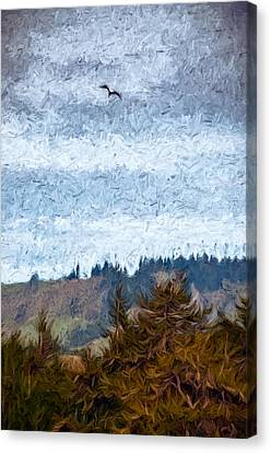 Gliding Over Firs Canvas Print