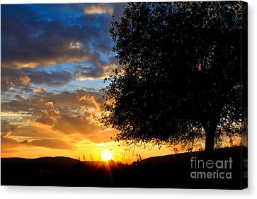 Canvas Print featuring the photograph Glimmer Of Hope by Everett Houser