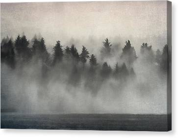 Glimpse Of Mist And Trees Canvas Print by Carol Leigh