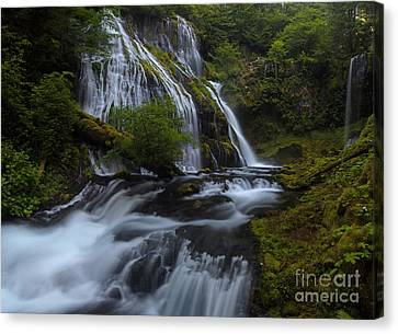 Glorious Cascading Canvas Print by Mike Reid