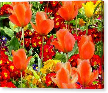 Glorious Garden Canvas Print by Bruce Nutting