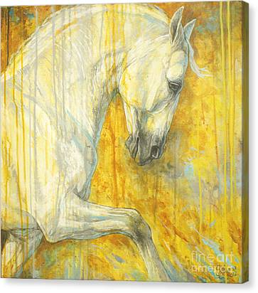 Dressage Canvas Print - Glorious Lipizzaner  by Silvana Gabudean Dobre