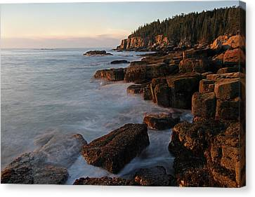 Glorious Maine Acadia National Park Canvas Print by Juergen Roth
