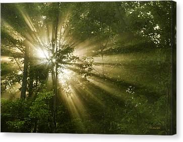 Glorious Morning Sunrise Canvas Print