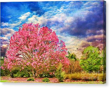Glorious Spring Canvas Print by Darren Fisher