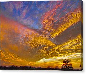 Glorious Sunrise Canvas Print by Shannon Story