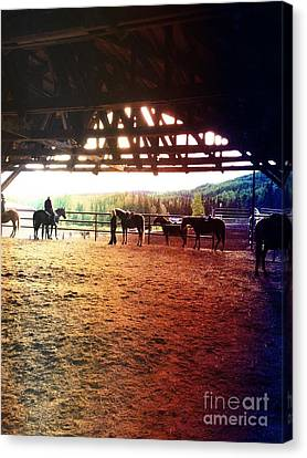 Canvas Print featuring the photograph Glory In Horses by J Ferwerda