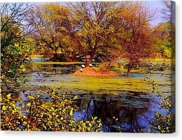 Glossy Nature Canvas Print by Deepti Chahar