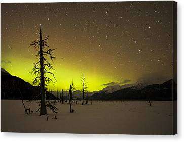 Out Of This World Canvas Print by Ted Raynor