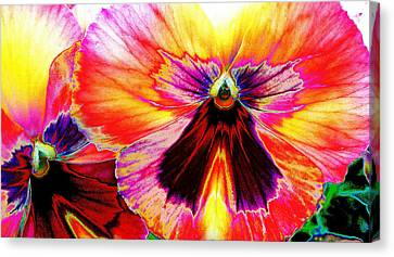 Canvas Print featuring the digital art Glowing Pansey by Suzanne Silvir