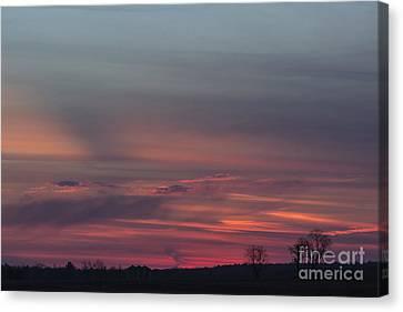 Glowing Plains Canvas Print