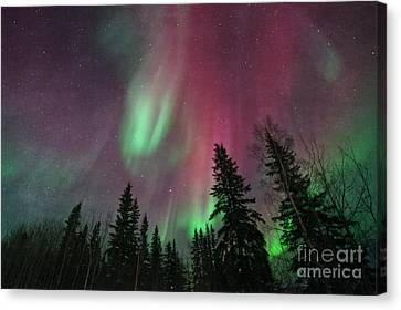 Glowing Skies Textured Canvas Print by Priska Wettstein