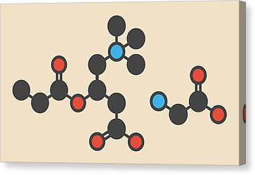 Glycine Molecule Canvas Print by Molekuul