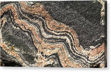 Gneiss Rock  Canvas Print by Les Palenik