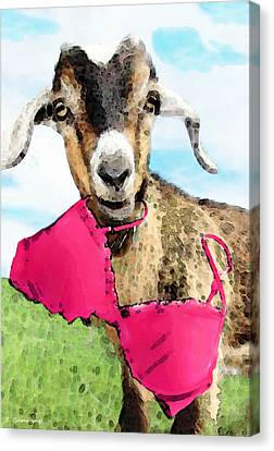 Goat Art - Oh You're Home Canvas Print by Sharon Cummings