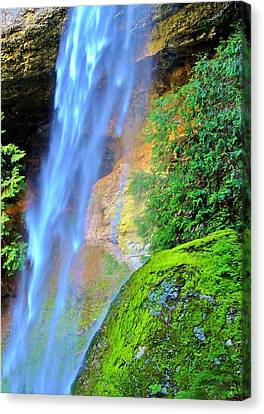 Goat Creek Falls Canvas Print