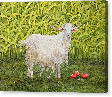 Goat Canvas Print by Ditz