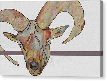 Goat Canvas Print by Water Lily