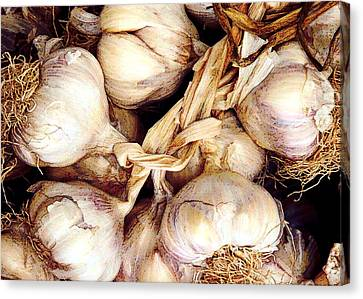 Gobs Og Garlic Canvas Print by Elaine Plesser