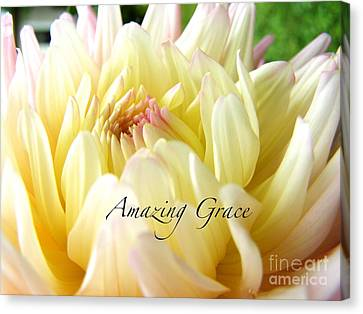 Canvas Print featuring the photograph God's Amazing Garden by Margie Amberge