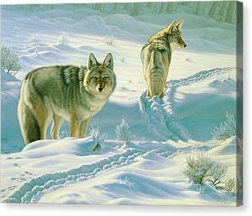 God's Dogs Canvas Print by Paul Krapf